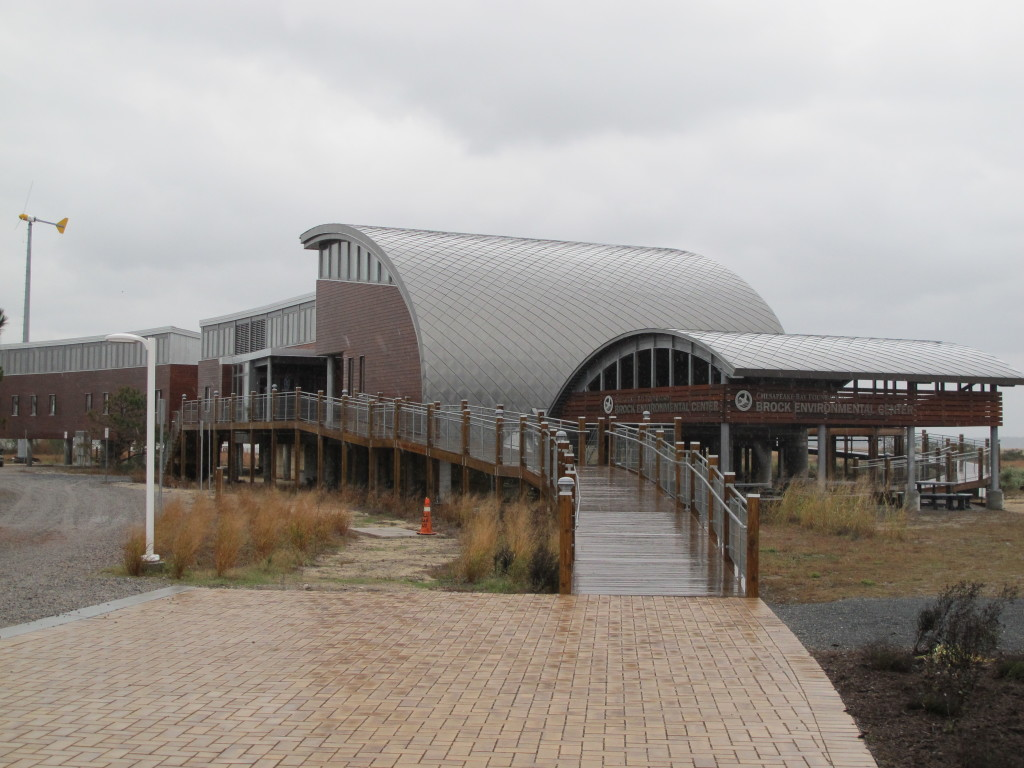 The Brock Environmental Center on a windy, rainy day in November. Photo: Alex Wilson
